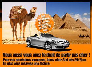 Chameau-Tunisie-copie-1.jpg