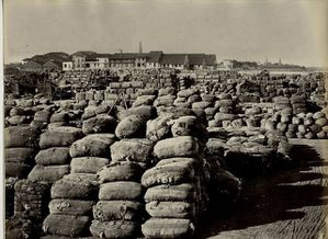 Cotton-Bales-at-the-Port---Bombay--Mumbai--1860-s.JPG