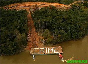 DeforestationGreenpeace-1-.jpg