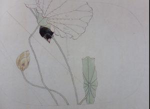 Lotus-et-oiseau.jpg