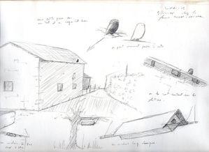 Croquis de terrain Chevêche185