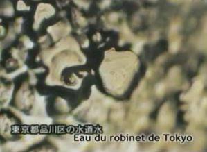 La Puissance des Mantras démontré scientifiquement Emoto-Photo-du-robinet