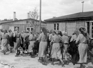 Women pronounced fit for labor at Birkenau