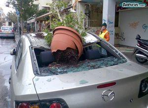 pot-fleurs-voiture.jpg