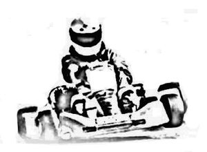 Karting Picture