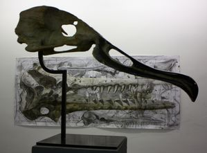 Sculpture-C-6866.JPG