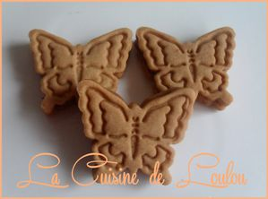 papillons-speculoos3.jpg