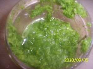 green-seasoning.jpg