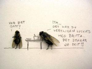 humor-with-dead-flies08-Humor-with-dead-flies.jpeg