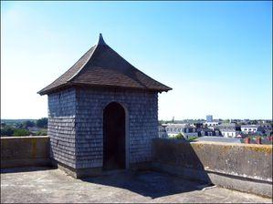 la tour beauvoir 048 copie