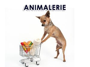 animalerie_a_laval_montreal.jpg