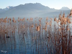 Lac-d-Annecy-2011-010_signee.jpg