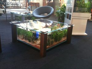 aquarium ou table basse de salon aquatic concept. Black Bedroom Furniture Sets. Home Design Ideas