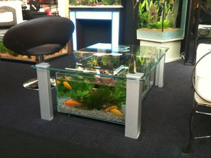 Table d aquarium occasion table de lit a roulettes for Table salon aquarium