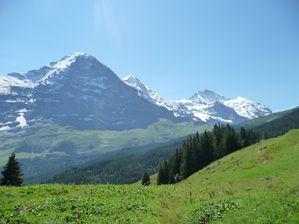 tandem suisse 180