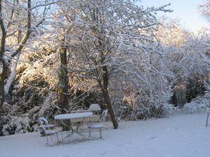 Decembre-au-jardin.jpg