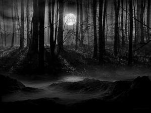 Dans la nuit brune - Desarthe