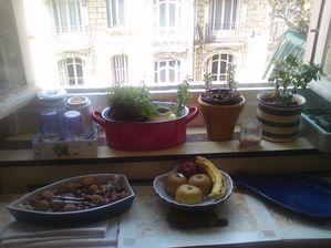 cusine -jardin