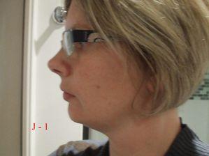 J-1-profil-gauche.JPG