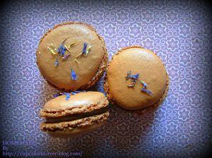 Macarons chocolat blanc vinaigre balsamique-003