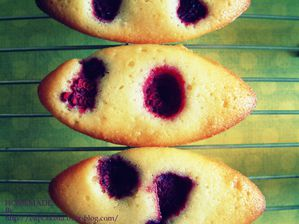 Financiers aux framboises-002
