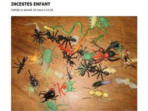 10-Insectes.jpg