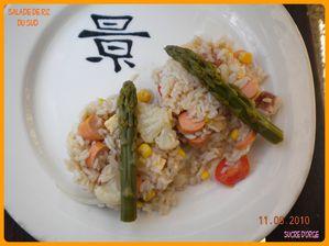 Salade De Riz Du Sud (2)