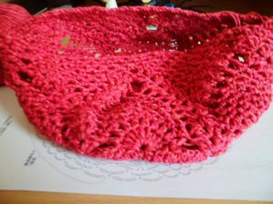 Filet-provision-rose-crochet1.JPG