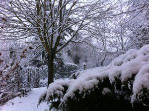 neige19dec.jpg