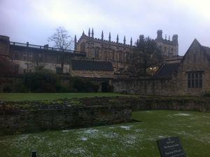 Oxford 8251