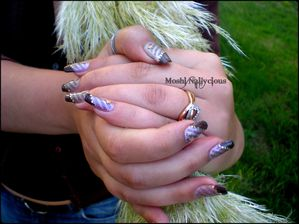 Concours-Western-LM-Naili--10-.jpg