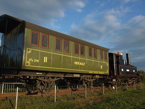 DSCF6654