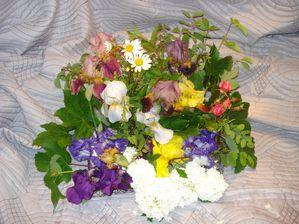 httpcalinquette.canalblog.com.JPG
