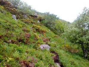 trail cantal 0457