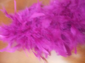 plumes froufrou