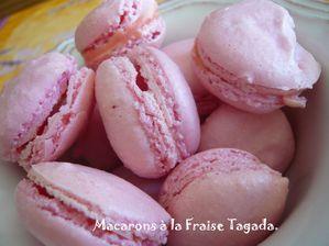 macarons tagada