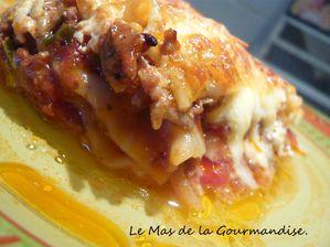 lasagnes bolognaises 1