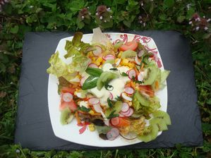 Salade-mixte-light.JPG