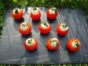 Tomates-Mozza--5-.JPG