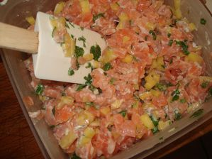 tartare-saumon-mangue3