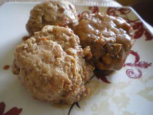 Boulettes-de-poulets-caramelisees-au-soja.JPG