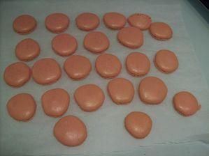 macarons roses tom.confite (1)