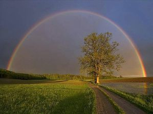 ARC EN CIEL