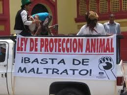 proteccion_animal32.jpg