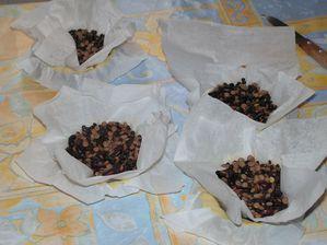 tartelettes-citronnees--2-.JPG