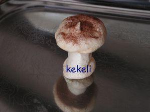 champignons-en-meringue.jpg