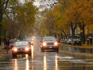 jour-de-pluie_1031.jpg