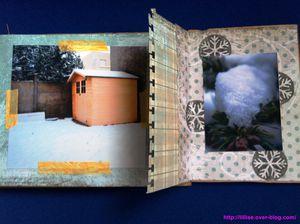 neige-3--Copier-.jpg