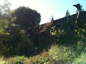 jardin-des-geants 1036b