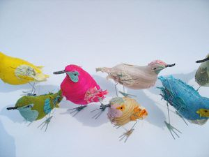 group-birds2.jpg